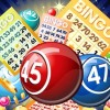 The Top Bingo Software Providers and How they Differ